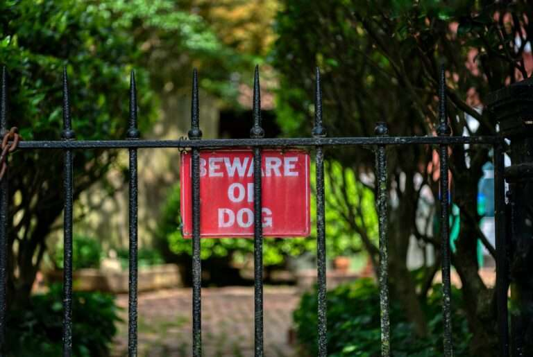 beware of dog sign behind fence